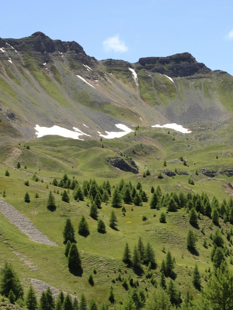 Combes à neige de l'alpage de Morgon