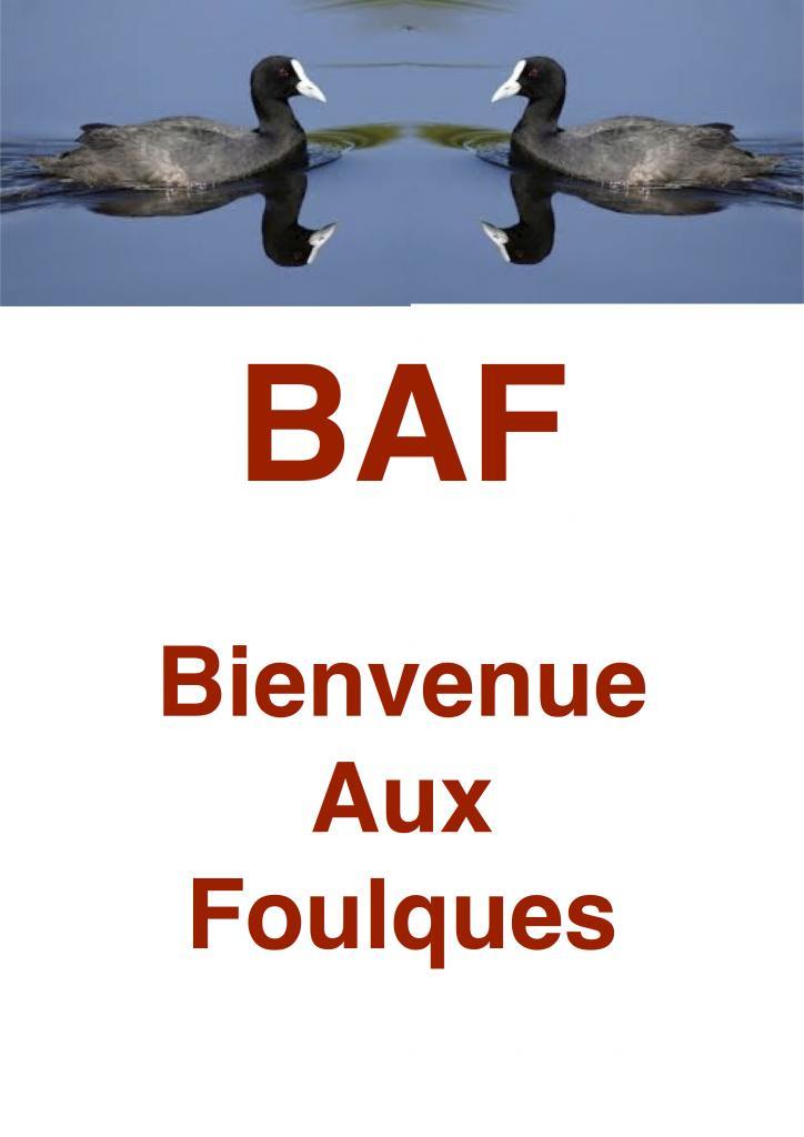 BAF Bienvenue Aux Foulques