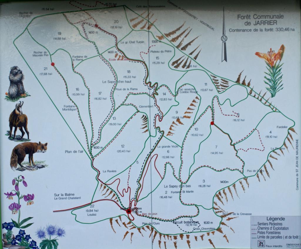 Plan du Bois du Sapey