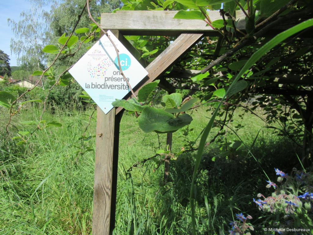 L'Oasis Nature de Michèle à Lournand