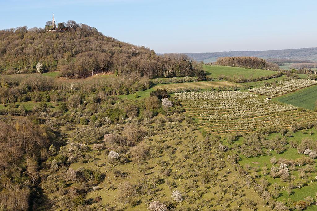 Terres de Lorraine