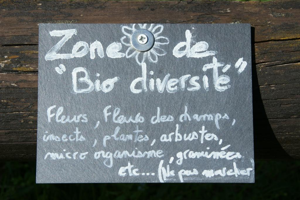 Zone de biodiversité Camping du Pont de Braye