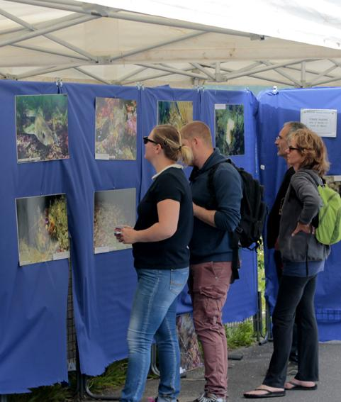 Expo photos sur fonds marins