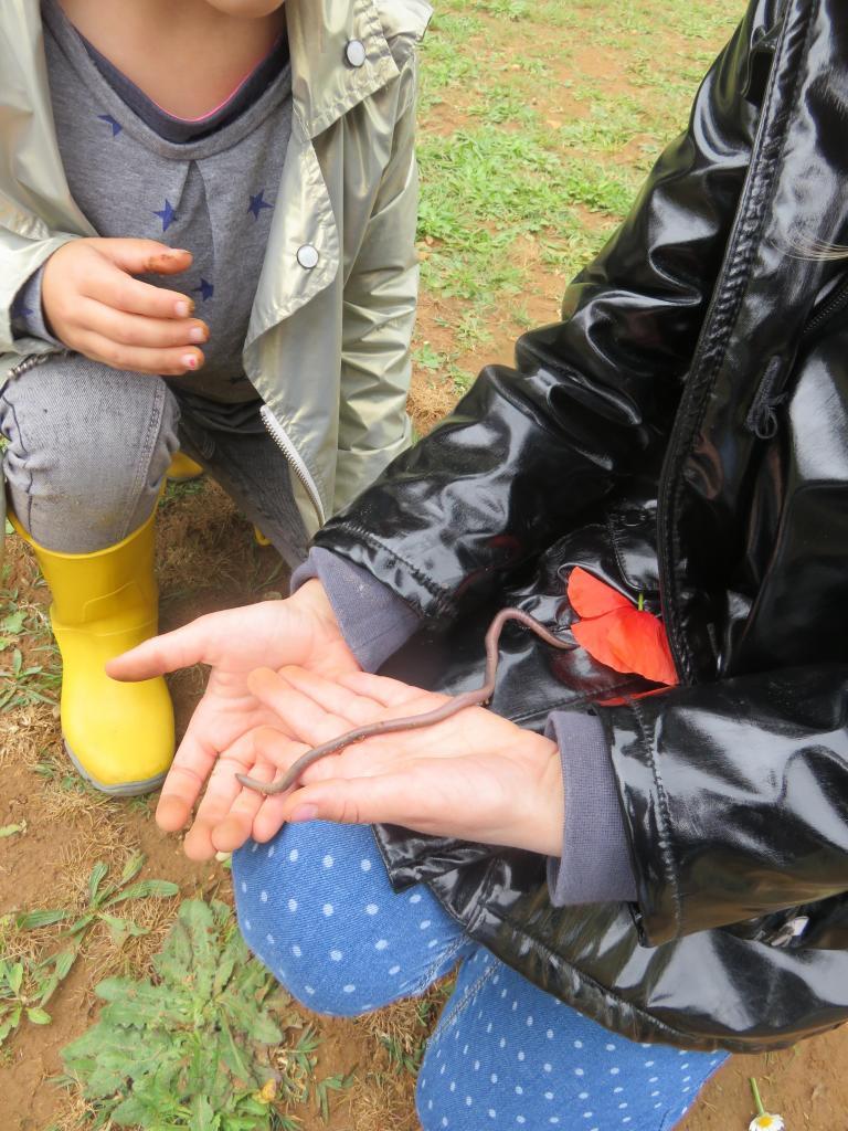 Fête de la nature pour les tout-petits à Piolenc 2-4 ans