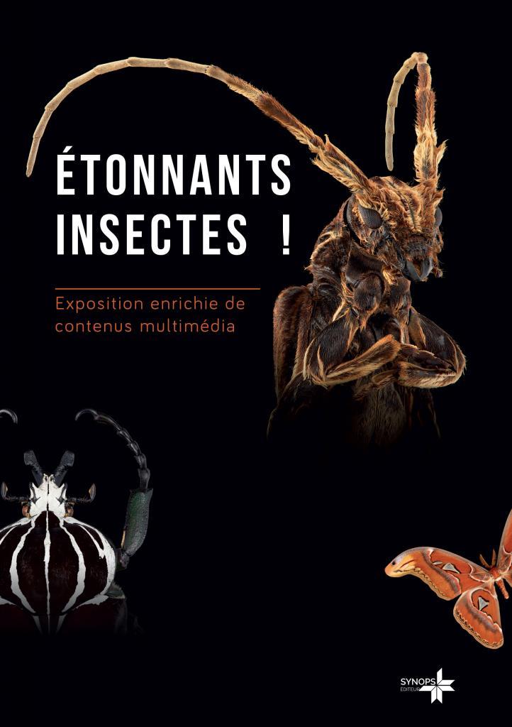 Exposition étonnants insectes pierrelatte