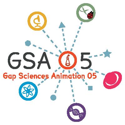logo GSA05