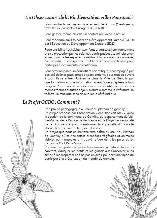 Projet OCBO (page 2)
