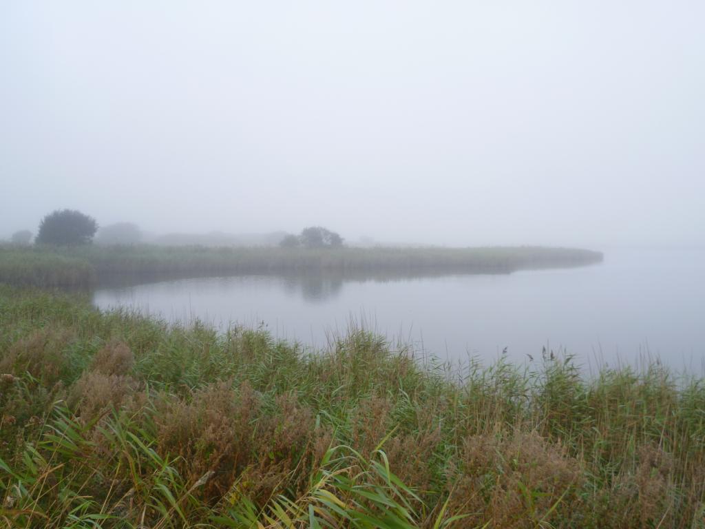 L'étang du Curnic dans la brume