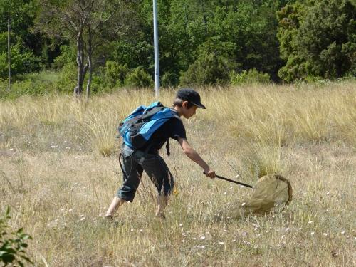 Comprendre la nature : un jeu d'enfant