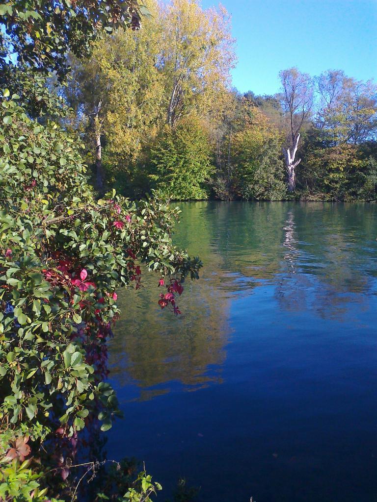 rivière Marne à Cumieres en Champagne