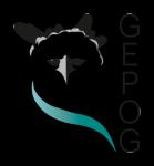 GEPOG (Groupe d'Etude et de Protection des Oiseaux en Guyane)