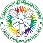 Réseau Tortues marines de Guyane