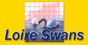 Loire Swans