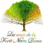 Les Amis de la forêt Notre-Dame