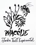 Association Phacélie