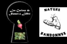 Nature Randonnée / Curieux de Nature
