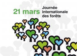 Une journée pour célébrer la forêt, l'arbre et le bois