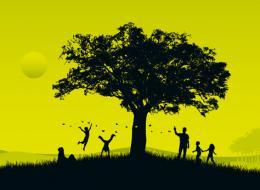 Votre arbre est-il celui de l'année ?