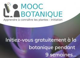 Nouveau MOOC Botanique
