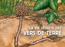 La vie secrète des vers de terre