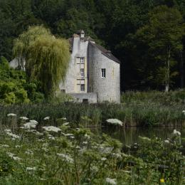 La forêt augmentée - Une flânerie inédite en forêt de Montmorency