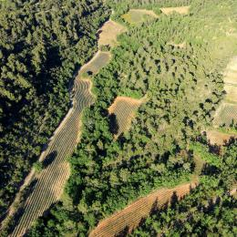 Pastoralisme, agriculture et papillons, une balade dans le vallon du Délubre